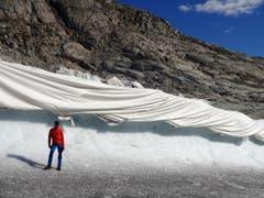 Effekt der Gletscher-Abdeckung an der Zunge des Rhonegletschers: Innerhalb von 13 Monaten wurden etwa vier Meter an Eisschmelze eingespart. (Bild: M. Huss)
