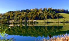 Herbststimmung am Rotsee. (Bild: Walter Buholzer, Rotsee, 16. Oktober 2019)