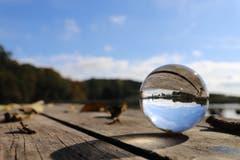 Mit dem Lensball auf Entdeckungsreise am Steinibühlweiher. (Bild: Xaver Husmann, Sempach, 19. Oktober 2019)
