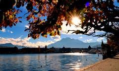 Herbstzeit in Luzern. (Bild: Walter Buholzer, Luzern, 20. Oktober 2019)