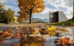 Der Herbst hält Einzug. (Bild: Daniel Hegglin, Zug, 19. Oktober 2019)