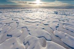 Arktisches Meereis. (Bild: Mario Hoppmann / Alfred-Wegener-Institut, Antarkis, 30. August 2015)