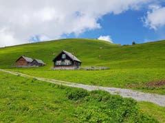 Irgendwo auf dem Weg im beschaulichen Appenzellerland. (Bild: Beata Maria Zdyb)