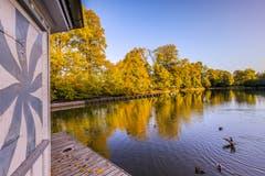 Goldiger Herbstmorgen am Bubenweiher in St. Gallen. (Bild: Christian Wild)