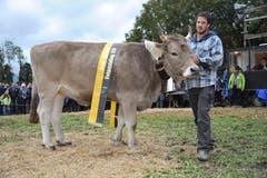 OB-Rinder-Champion «Lorena» aus dem Stall von Thomas Arnold, Bürglen. (Bild: Urs Hanhart, Schattdorf, 5. Oktober 2019)