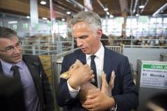 72. Olma: Bundespräsident Didier Burkhalter zeigt sich mit Säuli. (Bild: Keystone/Gian Ehrenzeller, 9. Oktober 2014)