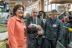 74. Olma: Bundesrat Ueli Maurer posiert mit Säuli. (Bild: Hanspeter Schiess, 13.Oktober 2016)