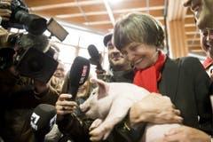 69. Olma: Bundespräsidentin Micheline Calmy-Rey hält das traditionelle Schweinchen im Arm. (Bild: Keystone/Ennio Leanza, 13. Oktober 2011)