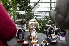 Verschiedene Designs von Urnen wurden ausgestellt. (Bild: KEYSTONE/Alexandra Wey, Luzern, 10. November 2019)