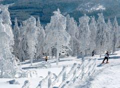 Sie ist vor allem als Wintersportparadies bekannt. (Bild: Keystone)