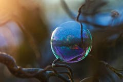 Jetzt gefrieren die Seifenblasen nicht mehr komplett, es ist zu warm. Der Effekt ist trotzdem schön! (Bild: Petra Jung, Hämikon, 13. Februar 2019)