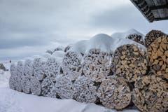 Eingefrorene Wärme: Holzbeigen in Eggersriet. (Bild: Hans-Jörg Nüesch