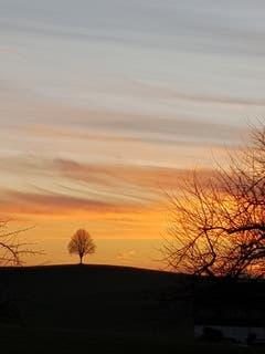 Sonnenuntergang in Hauptwil. (Bild: Reto Schlegel)