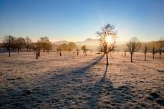 Ein frostiger Morgen in Neuenkirch. (Bild: Franziska Müller, Neuenkirch, 16. Februar 2019)
