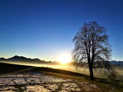 Ein wunderbarer Sonnenaufgang auf dem Sonnenberg. (Bild: Urs Gutfleisch, Luzern, 16. Februar 2019)