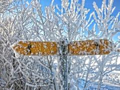 Gais: in alle Richtungen (Bild: Toni Sieber)