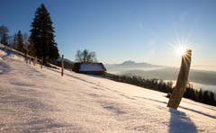 Winterstimmung auf dem Zugerberg. (Bild: Daniel Hegglin (Zugerberg, 16. Februar 2019))