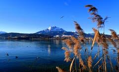 Ein Wintertag wie im Bilderbuch. (Bild: Walter Buholzer (Hans Erni Quai, 17. Februar 2019))