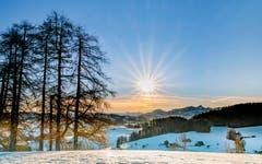 Guten Morgen Lutzenland. (Bild: Luciano Pau)