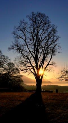 Sonnenaufgang über Dreilinden. (Walter Buholzer (Luzern, 18. Februar 2019))