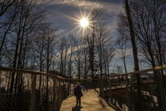 Ausflug zum Baumwipfelpfad bei schönstem Sonnenschein. (Bild: Daniel Bisang)