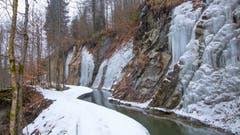Bächlein im Winter. (Bild: Priska Ziswiler-Heller, Entlebuch, 2. Februar 2019)