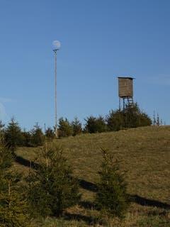 Bei Vollmond braucht er eine Stütze. Aufgenommen in Oberneunforn. (Bild: Claude Besançon)