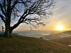 Wunderbarer Sonnenaufgang mit Blick auf die Rigi. (Bild: Urs Gutfleisch, Holderchäppeli, 20. Februar 2019)