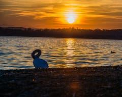 Einer der vielen wunderschönen Sonnenuntergänge der letzten Woche(n). (Bild: Raymond Bieri, Zug, 18. Februar 2019)