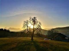 Wunderbarer Sonnenaufgang in der Naturlandschaft. (Bild: Urs Gutfleisch, Malters, 21. Februar 2019)