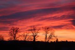 Sonnenuntergang. (Bild: Annerös Künzli (Emmenbrücke, 23. Februar 2019))