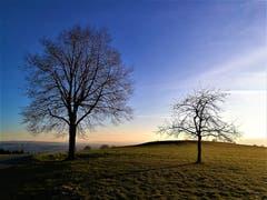 Die ersten Sonnenstrahlen erleuchten die Naturlandschaft. Ein weiterer wunderbarer Sonnentag steht uns bevor. (Bild: Urs Gutfleisch (Ruswil, 24. Februar 2019))
