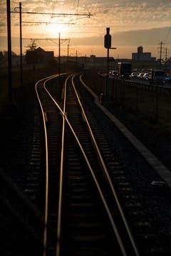 Nach Münchwilen glänzen die Schienen goldgelb im Morgenlicht.
