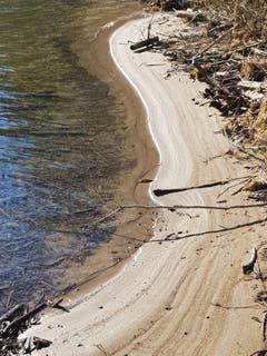 Sandstrand an der Thur im Ghögg. (Bild: Reto Schlegel)