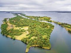 Silt Jetties bei den Gippsland-Seen: Der nicht regulierte Mitchell River hat eine atemberaubende Landschaft mit Auenwäldern geschaffen. (Bild: Peter Lenk/Alamy)