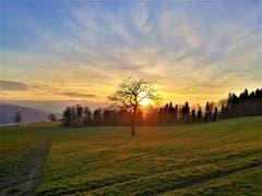 Wunderbar farbiger Sonnenuntergang. (Bild: Urs Gutfleisch, Ruswil, 26. Februar 2019)