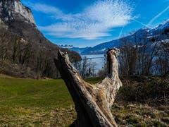 Unterwegs zu den Seerenbachfällen am Walensee. (Bild: Renato Maciariello)