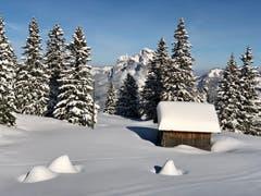 Winterbild von unterhalb des Klingenstocks (Bild: Markus Brülhart (Klingenstock, 4. Februar 2019))