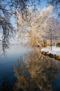 Ein herrlicher Winterwochenstart im Villettenpark Cham. (Bild: Anita Imfeld-Leu, Cham, 4. Februar 2019)