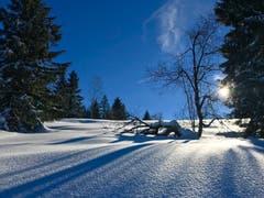 Winterimpression auf dem Raten. (Bild: Peter Bumbacher, Raten, 5. Februar 2019)