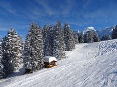 Im Hochybrig hat es sehr viel Schnee. (Bild: Walter von Holzen (Hochybrig, 4. Februar 2019))
