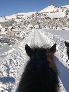 Herrlicher Winterausritt in der Lifelen. (Bild: Hanny Odermatt, Lifelen, 5. Februar 2019)