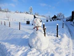 Gross und stark muss man als Schneemann sein, dann können die wärmeren Tage auch nicht so schnell einen Schaden anrichten! (Bild: Margrith Imhof-Röthlin, Meggen, 4. Februar 2019)
