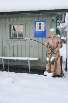 Was wird diese Fischer wohl für Infos abgeben? Aufgenommen in Wiedehorn, Egnach. (Bild: Margrith Hengartner)