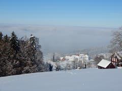 Über dem Nebel das Kloster Notkersegg. (Bild: Irene Weibel)