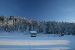 Der Wenigerweiher im Wintergewand. (Bild: Daniel Locher)