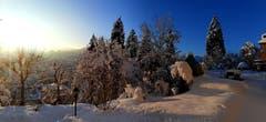 Winterzauber auf dem St. Galler Rosenberg. (Bild: Paul Scheibling)