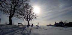 Winternachmittag auf dem Fünfländer-Blick. (Bild: Klaus Businger)