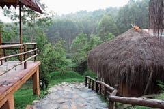 Die Öko-Resorts von Praveen Muraleedharan sind in die Natur eingebettet. (Bild: Angela Bernetta)