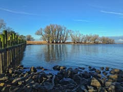 Immer noch Niedrigwasser im Bodensee (Bild: Toni Sieber)